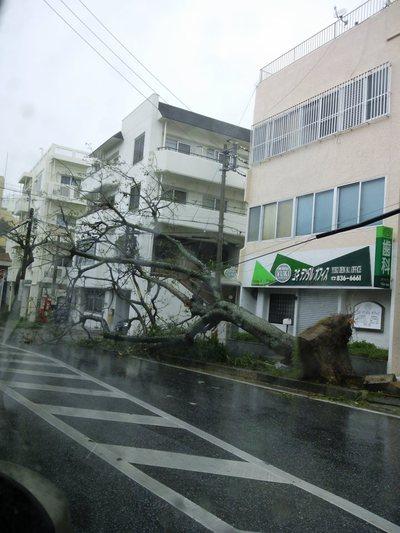台風17~2